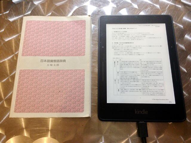Kindle pdf 08